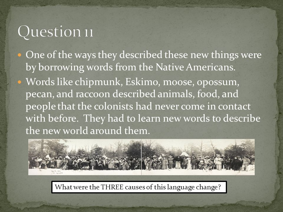 One of the ways they described these new things were by borrowing words from the Native Americans.