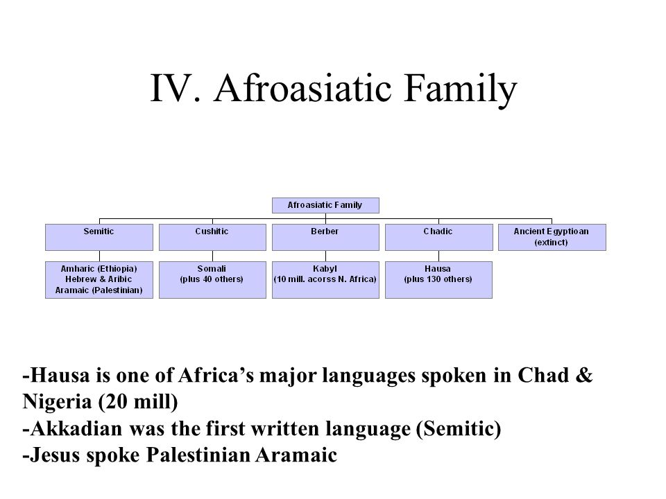 IV. Afroasiatic Family -Hausa is one of Africa's major languages spoken in Chad & Nigeria (20 mill) -Akkadian was the first written language (Semitic)