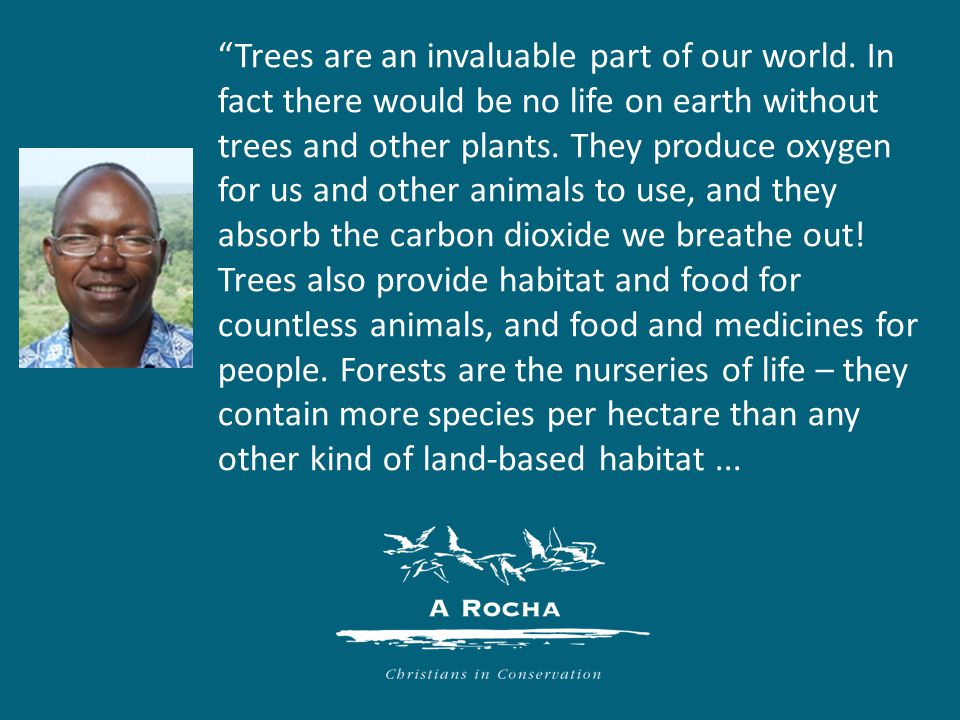 That's why we need to protect them, and why the work of A Rocha's tropical forests programme is so important.