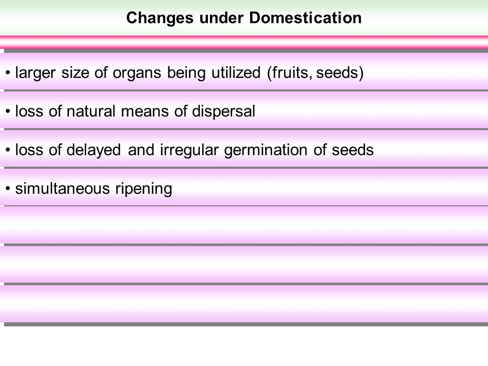 Changes under Domestication larger size of organs being utilized (fruits, seeds) loss of natural means of dispersal loss of delayed and irregular germ