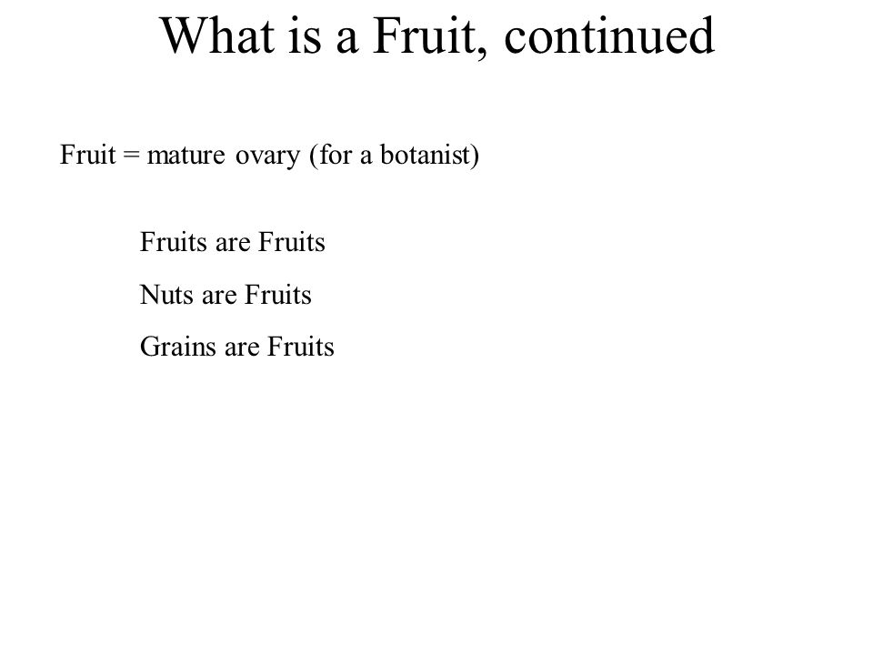 What is a Fruit, continued Fruits are Fruits Nuts are Fruits Grains are Fruits Fruit = mature ovary (for a botanist)