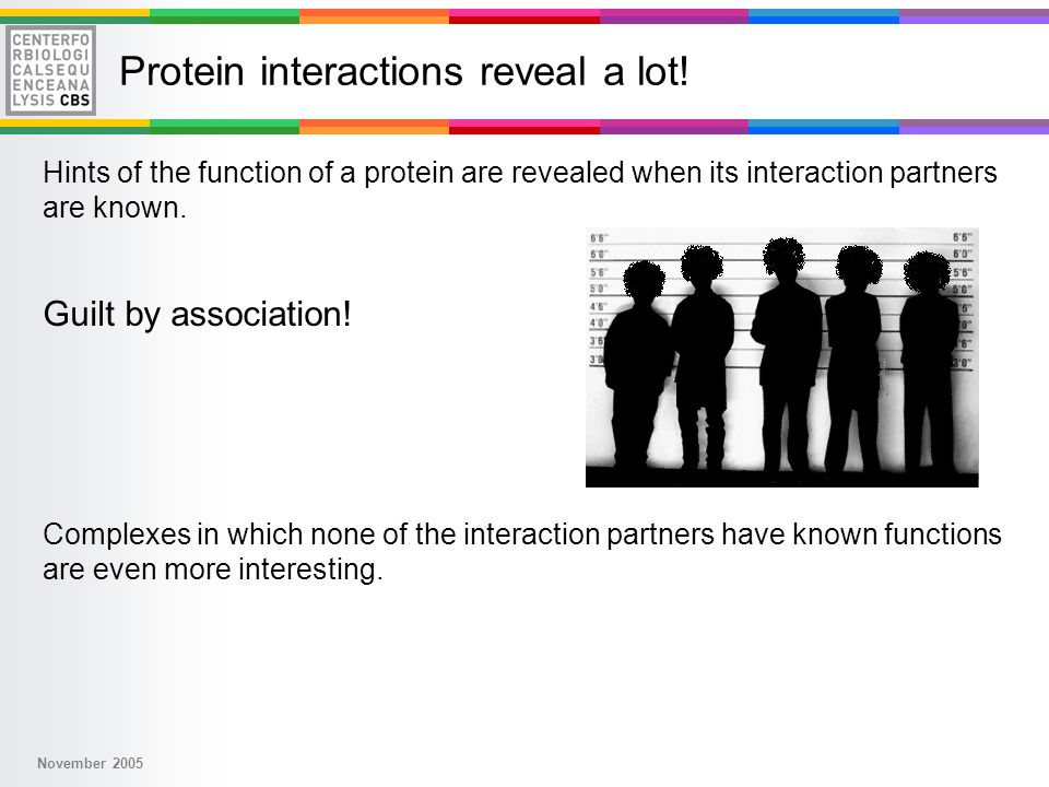 November 2005 Protein interactions reveal a lot.