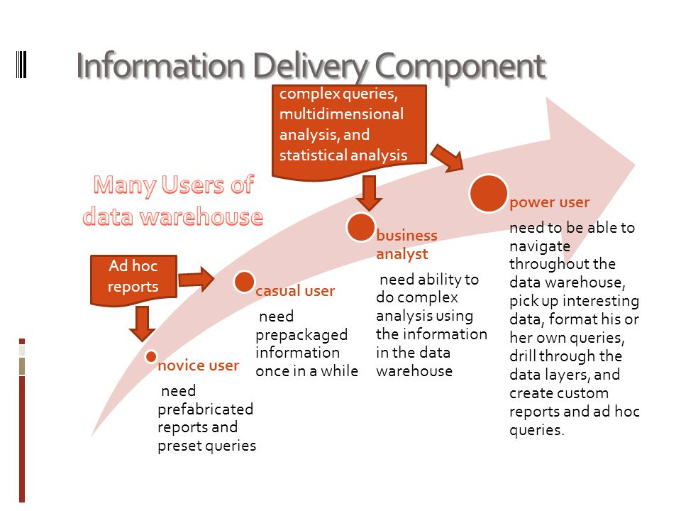 Information Delivery Component novice user need prefabricated reports and preset queries casual user need prepackaged information once in a while business analyst need ability to do complex analysis using the information in the data warehouse power user need to be able to navigate throughout the data warehouse, pick up interesting data, format his or her own queries, drill through the data layers, and create custom reports and ad hoc queries.