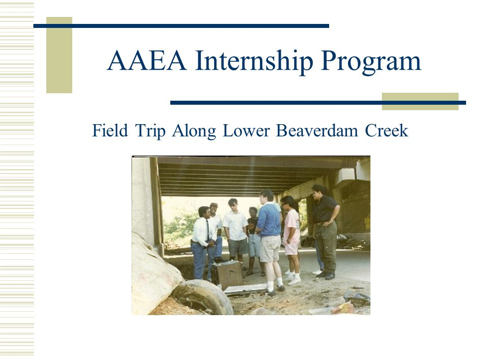 AAEA Internship Program Field Trip Along Lower Beaverdam Creek