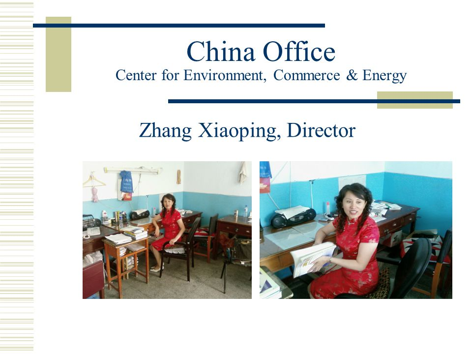 China Office Center for Environment, Commerce & Energy Zhang Xiaoping, Director