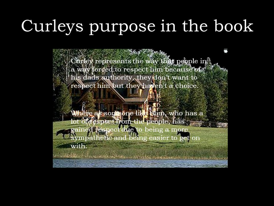 Curleys purpose in the book Curley represents the way that people in a way forced to respect him because of his dads authority, they don't want to res