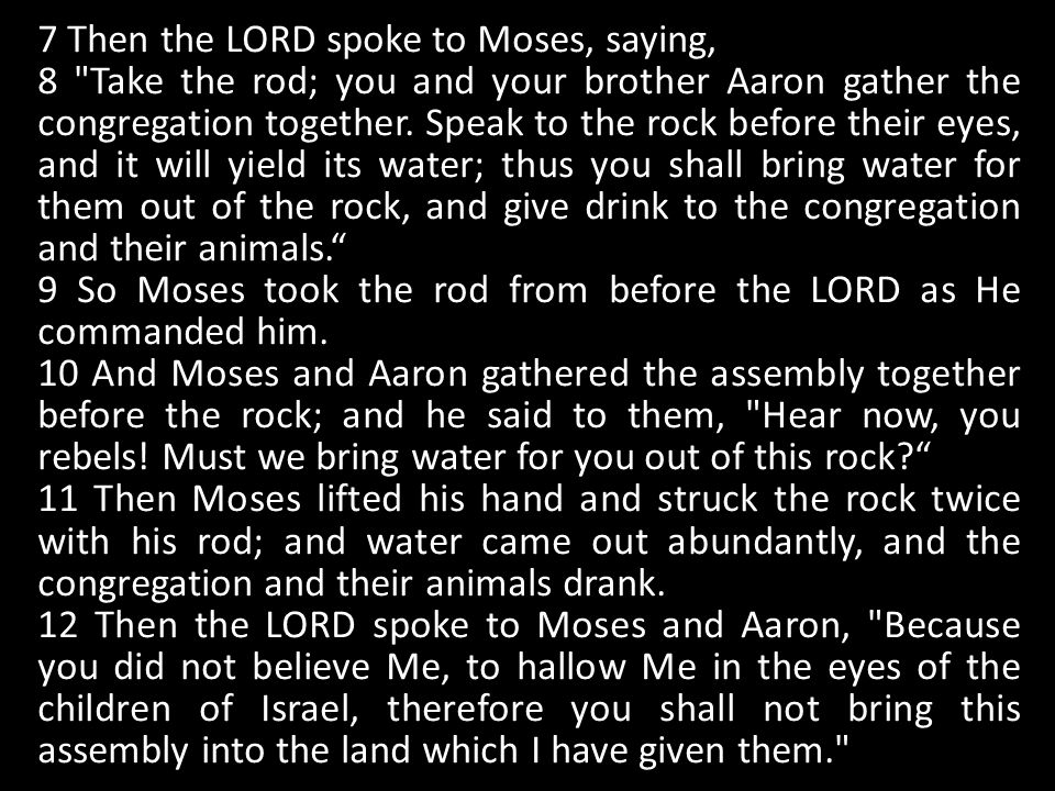 7 Then the LORD spoke to Moses, saying, 8 Take the rod; you and your brother Aaron gather the congregation together.
