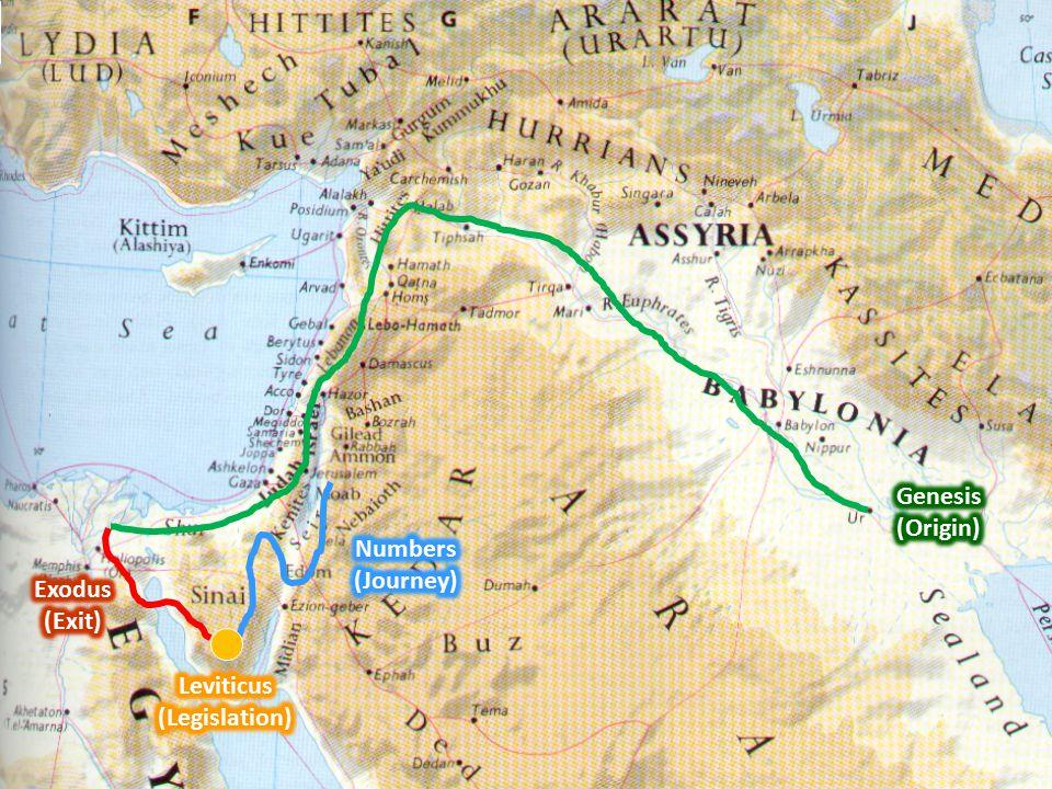 EXODUS LEVITICUSS NUMBERS To Sinai Exodus 1-18 At Sinai Leviticus 1-27 To Moab Numbers 10-22 Chronological order of Numbers