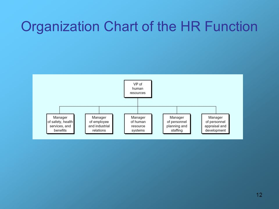 12 Organization Chart of the HR Function