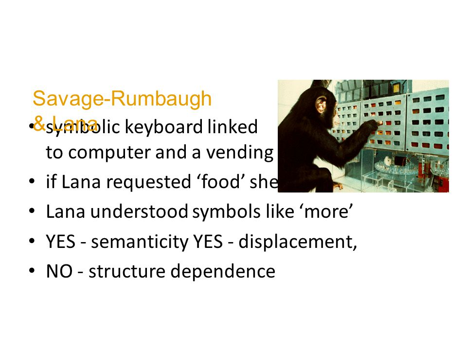 symbolic keyboard linked to computer and a vending machine if Lana requested 'food' she received it Lana understood symbols like 'more' YES - semanticity YES - displacement, NO - structure dependence Savage-Rumbaugh & Lana