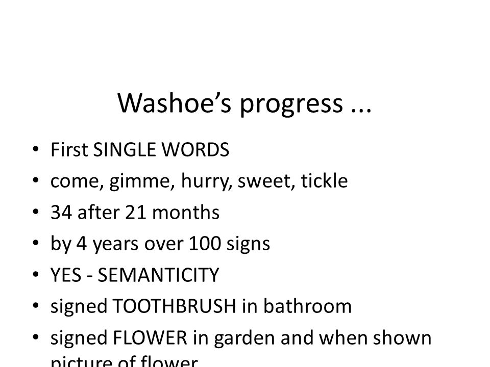 Washoe's progress...