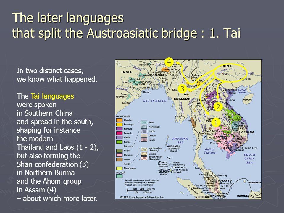 The later languages that split the Austroasiatic bridge : 1.