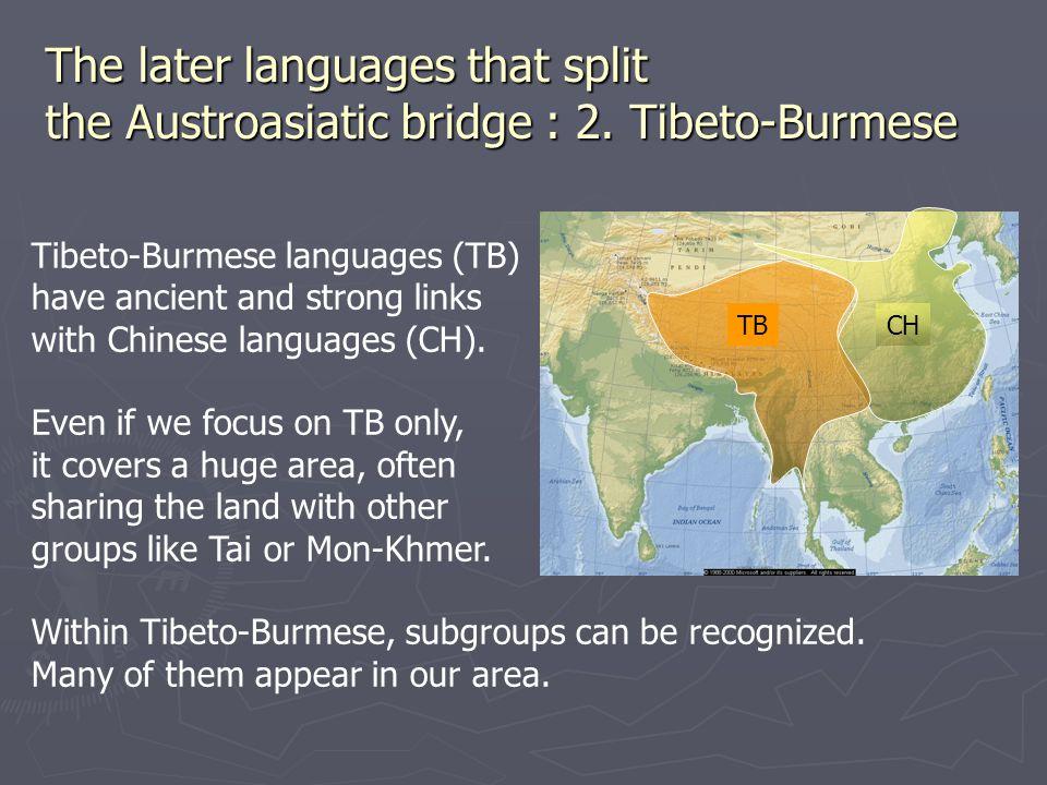 The later languages that split the Austroasiatic bridge : 2.