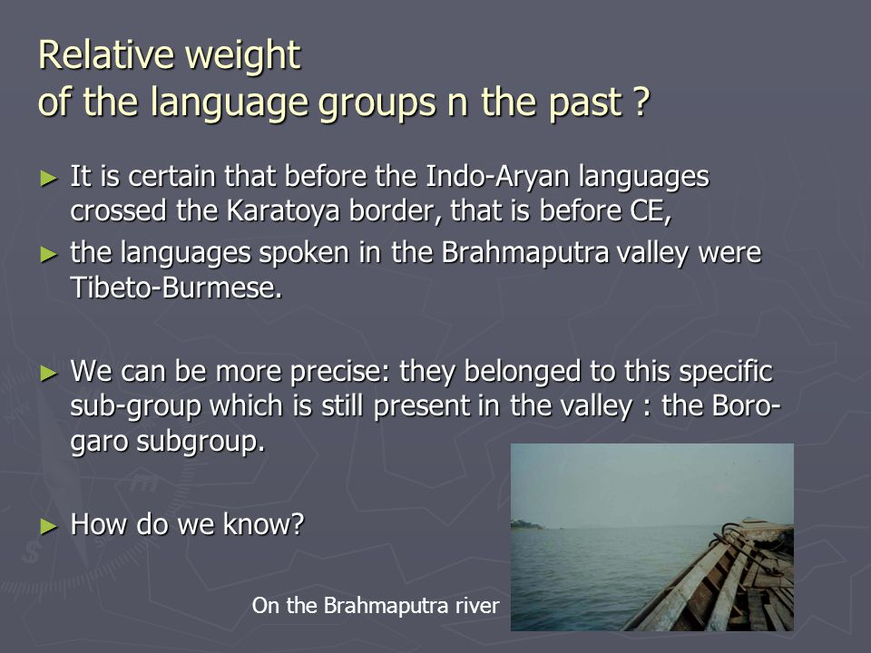 Relative weight of the language groups n the past .