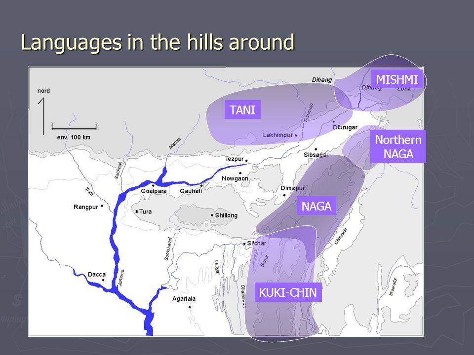 Languages in the hills around TANI MISHMI Northern NAGA KUKI-CHIN