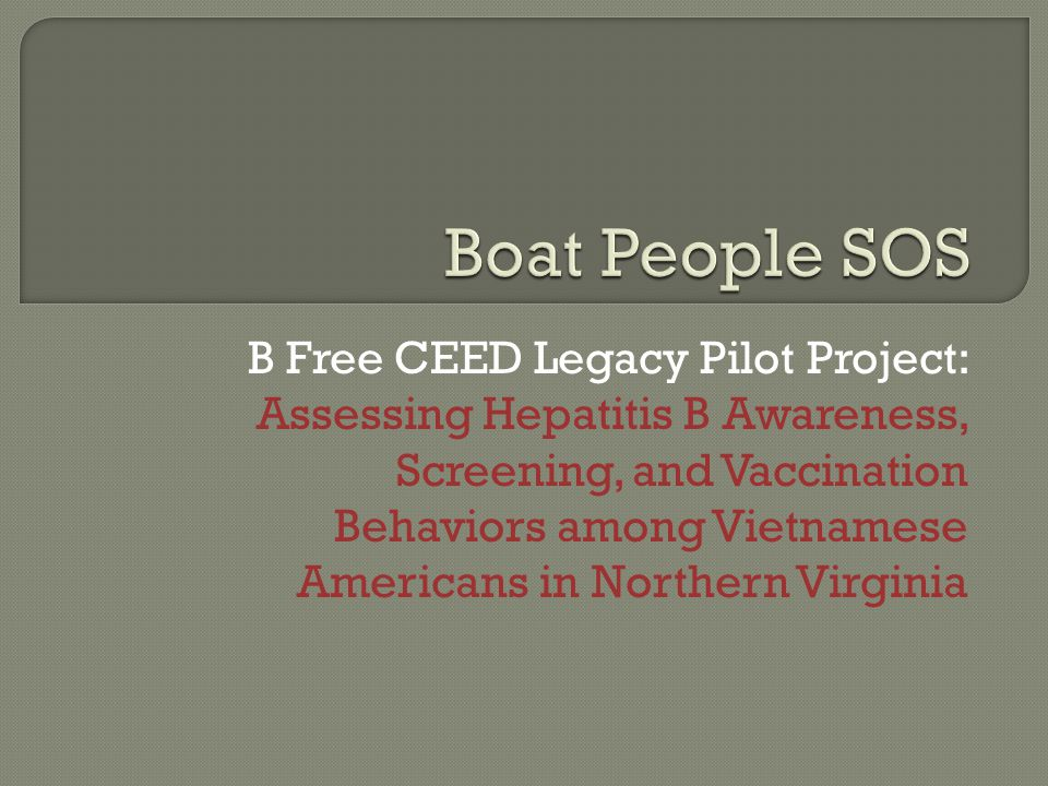 B Free CEED Legacy Pilot Project: Assessing Hepatitis B Awareness, Screening, and Vaccination Behaviors among Vietnamese Americans in Northern Virginia