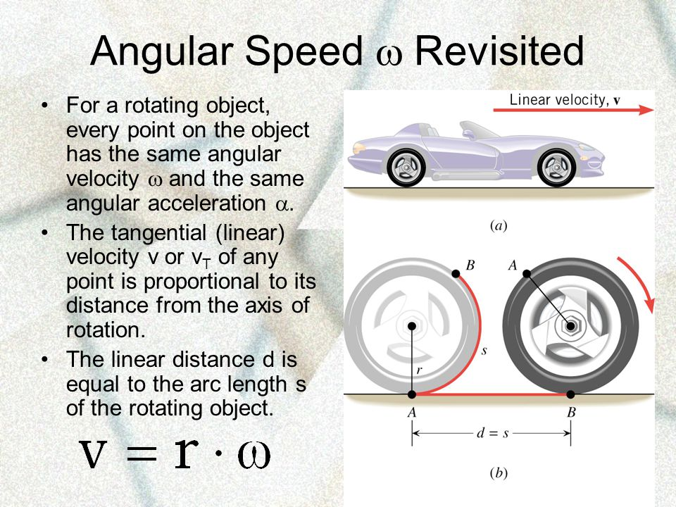 Angular Speed  Revisited For a rotating object, every point on the object has the same angular velocity  and the same angular acceleration .