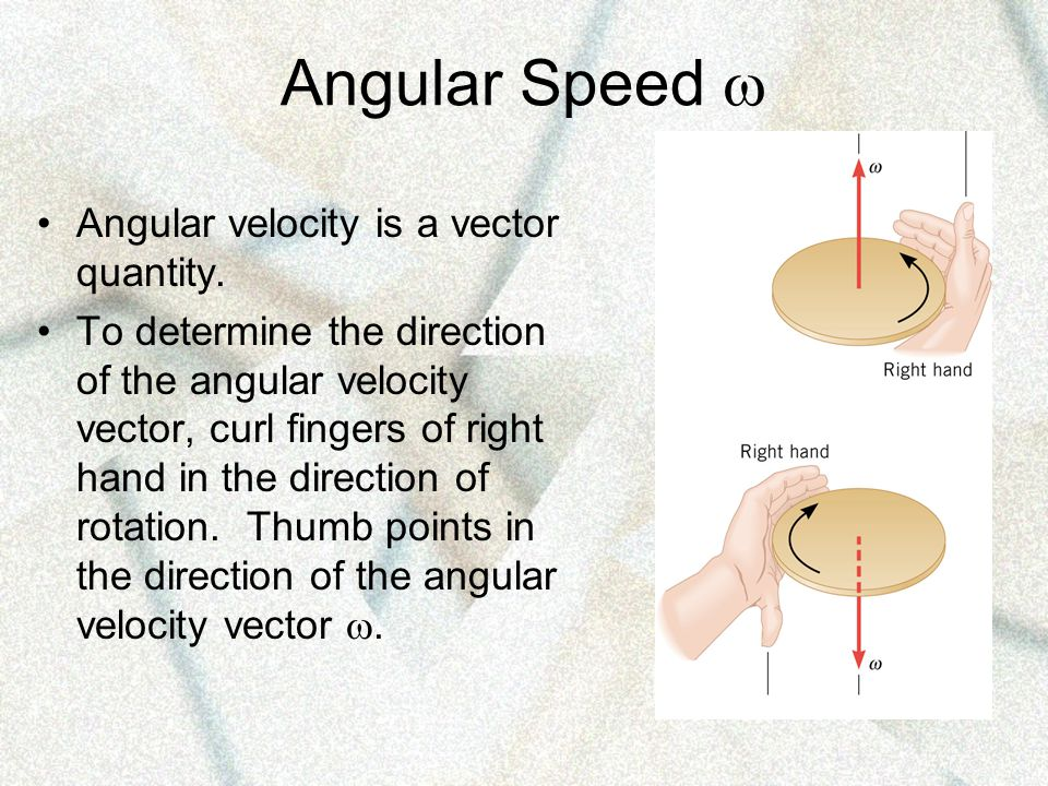 Angular Speed  Angular velocity is a vector quantity.