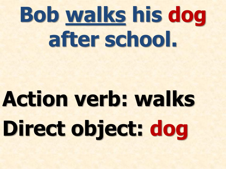 Bob walks his dog after school. Action verb: walks Direct object: dog
