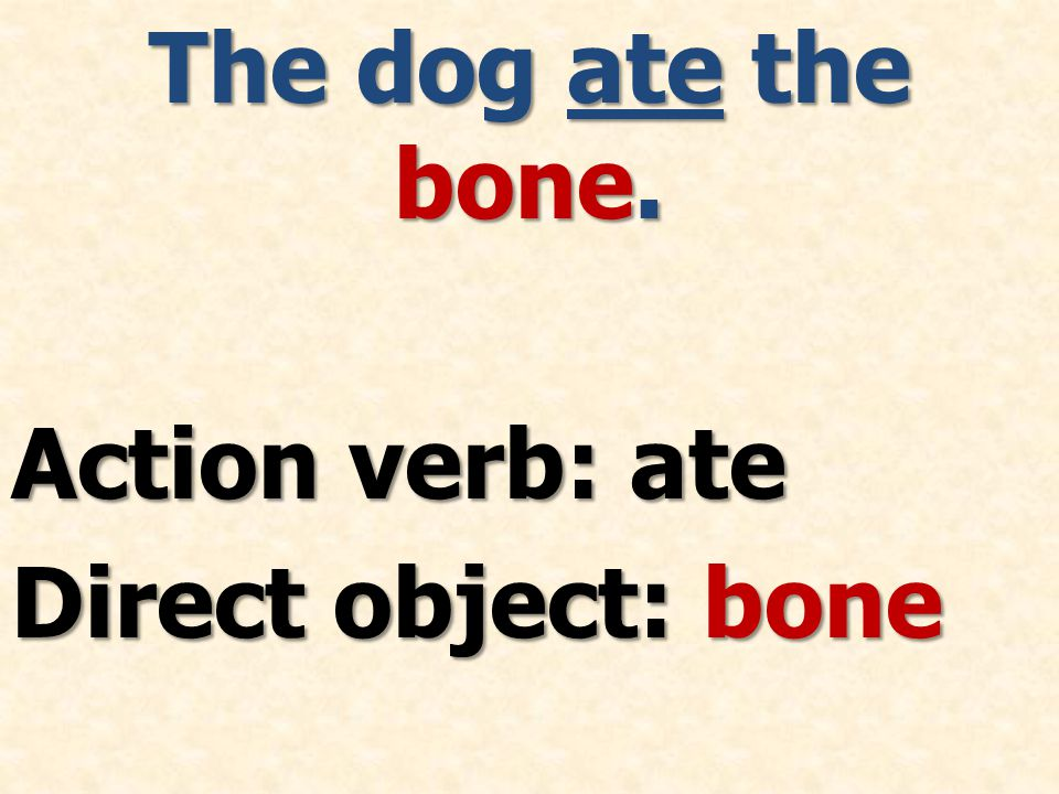 The dog ate the bone. Action verb: ate Direct object: bone
