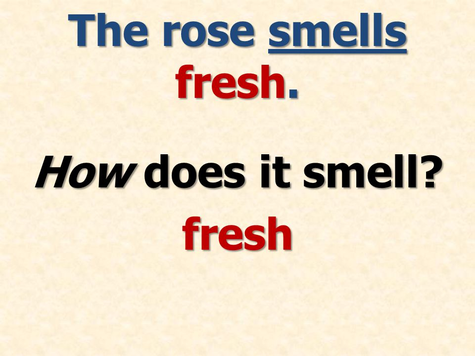 The rose smells fresh. How does it smell fresh
