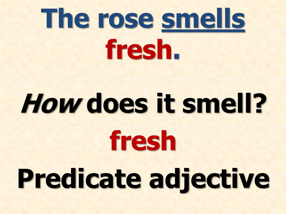 The rose smells fresh. How does it smell fresh Predicate adjective