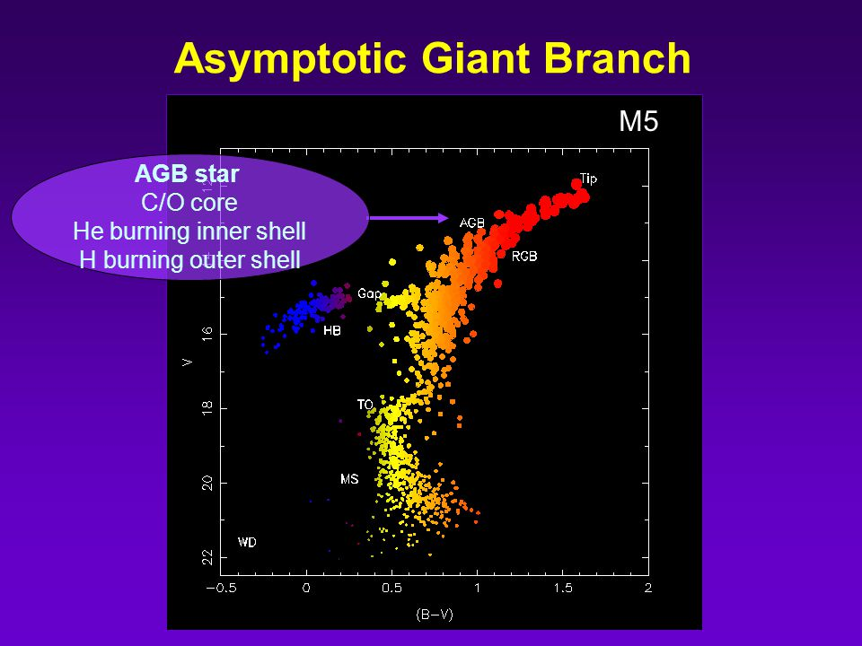 M5 Asymptotic Giant Branch AGB star C/O core He burning inner shell H burning outer shell