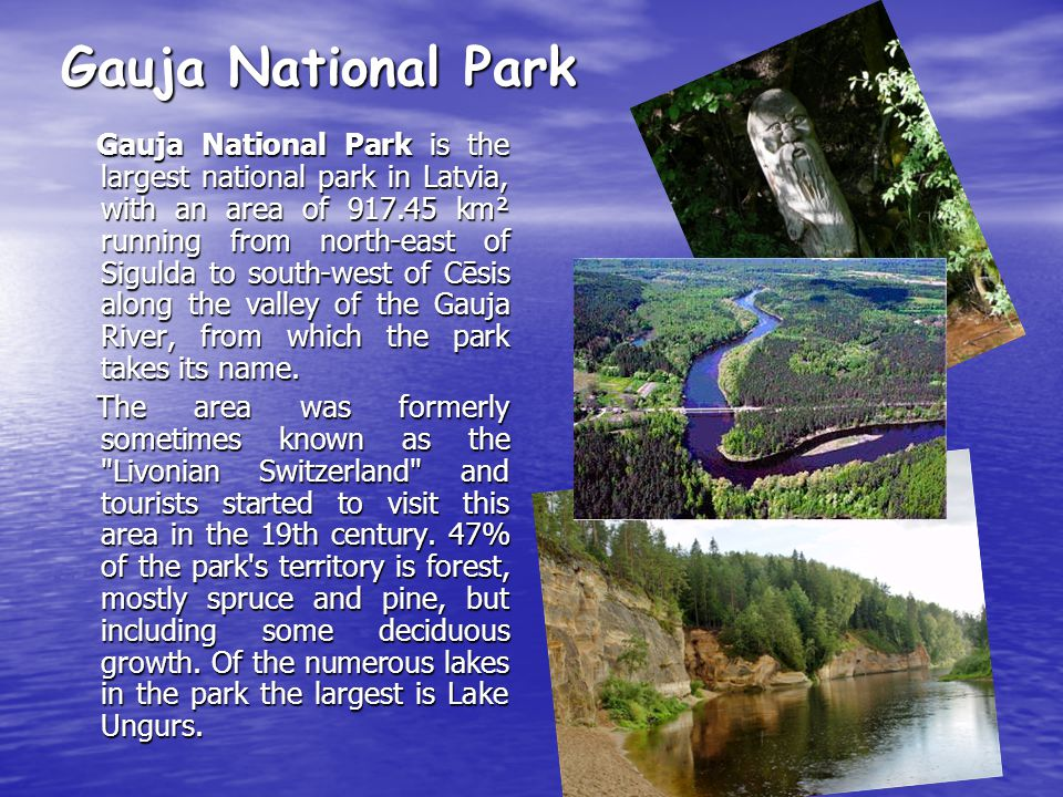 Gauja National Park Gauja National Park is the largest national park in Latvia, with an area of 917.45 km² running from north-east of Sigulda to south-west of Cēsis along the valley of the Gauja River, from which the park takes its name.