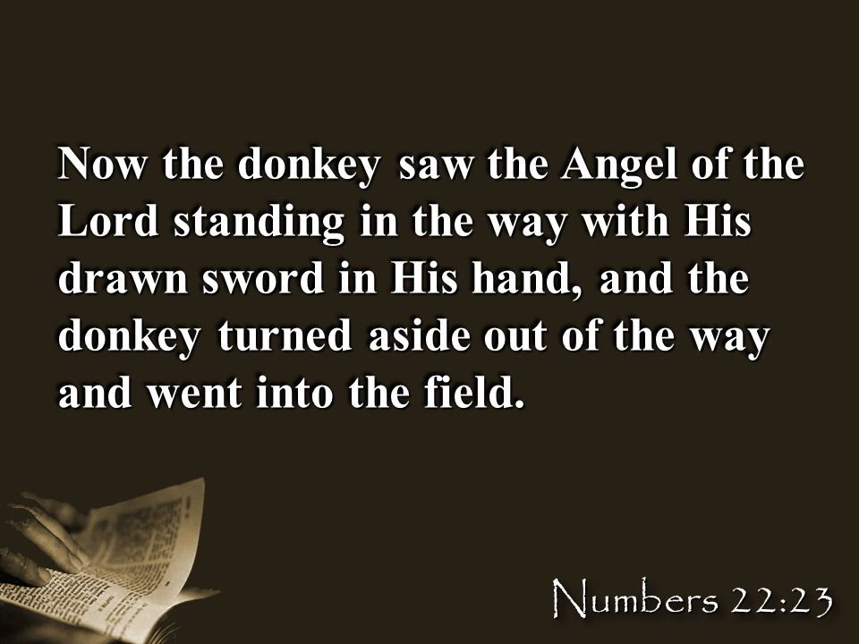 Now the donkey saw the Angel of the Lord standing in the way with His drawn sword in His hand, and the donkey turned aside out of the way and went into the field.