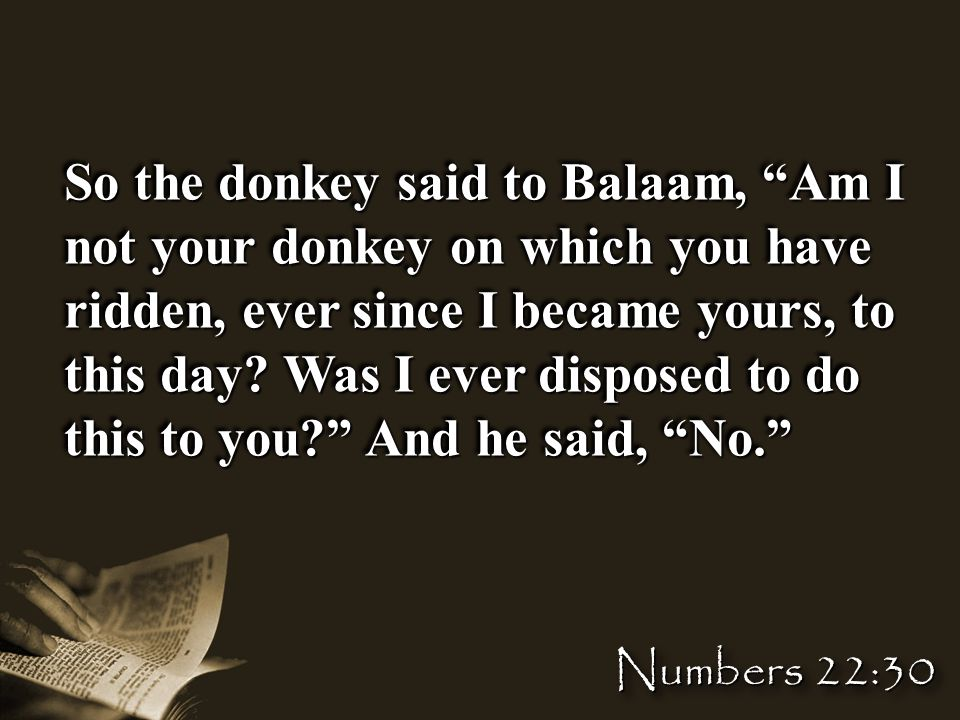 So the donkey said to Balaam, Am I not your donkey on which you have ridden, ever since I became yours, to this day.