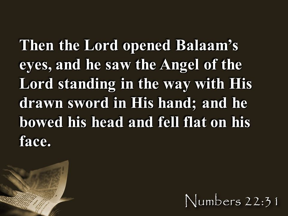 Then the Lord opened Balaam's eyes, and he saw the Angel of the Lord standing in the way with His drawn sword in His hand; and he bowed his head and fell flat on his face.