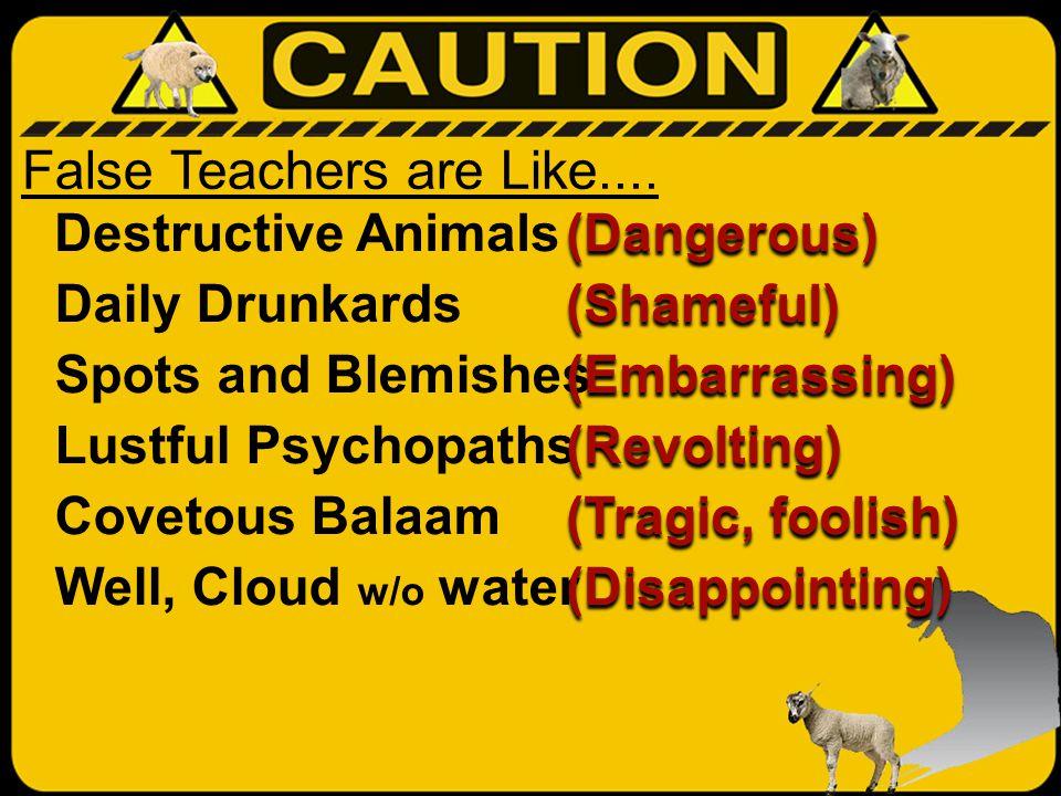 False Teachers are Like....
