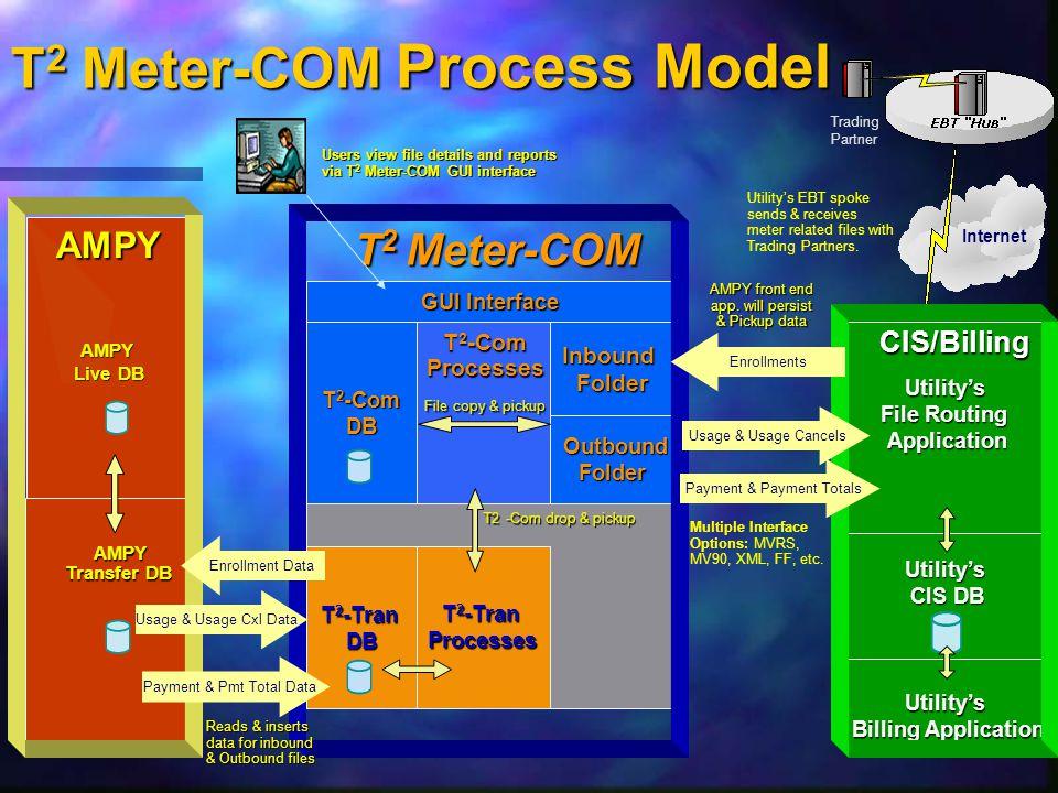 Utility's Billing Application T 2 -Com DB T 2 -Tran Processes DB InboundFolder Outbound OutboundFolder T 2 -Com Processes AMPY AMPY Live DB T 2 Meter-COM Process Model T2 -Com drop & pickup T2 -Com drop & pickup Multiple Interface Options: MVRS, MV90, XML, FF, etc.