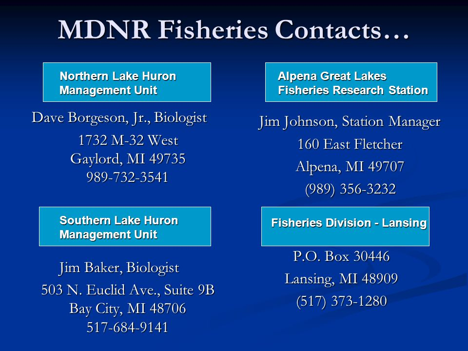 MDNR Fisheries Contacts… Dave Borgeson, Jr., Biologist 1732 M-32 West Gaylord, MI 49735 989-732-3541 Jim Baker, Biologist 503 N.