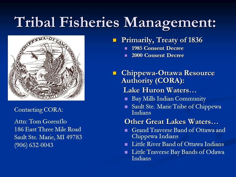 Tribal Fisheries Management: Primarily, Treaty of 1836 1985 Consent Decree 2000 Consent Decree Chippewa-Ottawa Resource Authority (CORA): Lake Huron Waters… Bay Mills Indian Community Sault Ste.