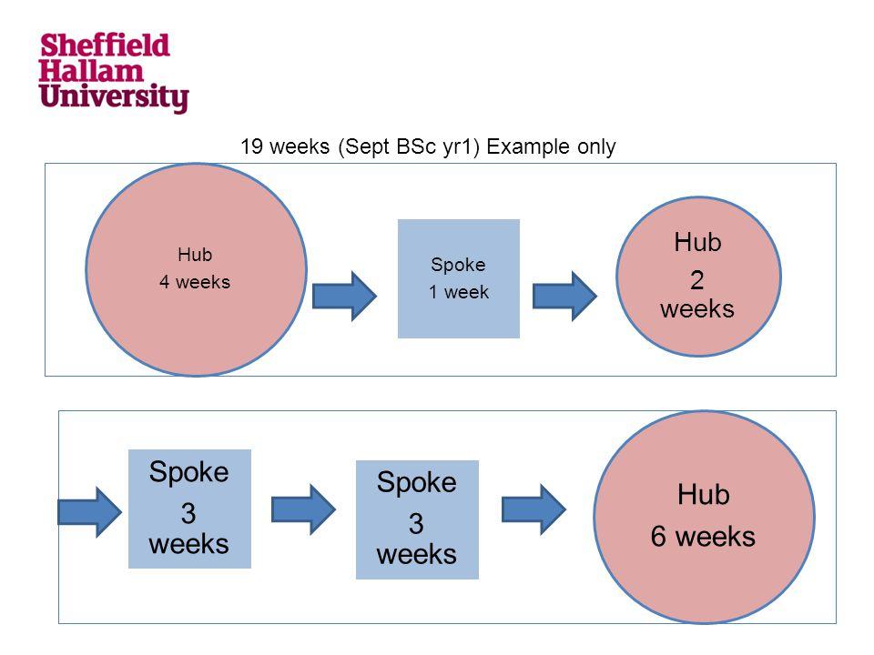 Hub 4 weeks Spoke 1 week Hub 2 weeks Hub 6 weeks Spoke 3 weeks Spoke 3 weeks 19 weeks (Sept BSc yr1) Example only