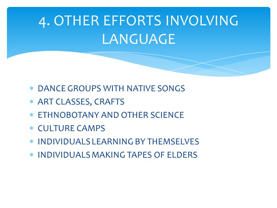  DANCE GROUPS WITH NATIVE SONGS  ART CLASSES, CRAFTS  ETHNOBOTANY AND OTHER SCIENCE  CULTURE CAMPS  INDIVIDUALS LEARNING BY THEMSELVES  INDIVIDUALS MAKING TAPES OF ELDERS 4.