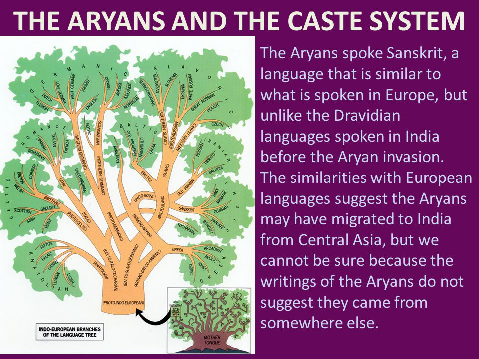 THE ARYANS AND THE CASTE SYSTEM The Aryans spoke Sanskrit, a language that is similar to what is spoken in Europe, but unlike the Dravidian languages