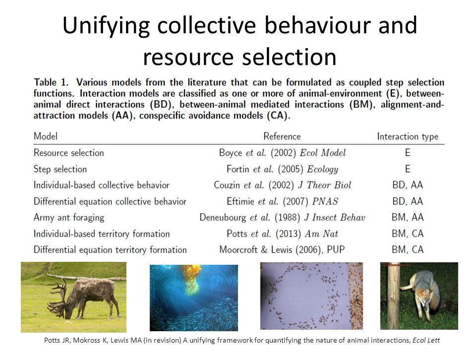 Unifying collective behaviour and resource selection Potts JR, Mokross K, Lewis MA (in revision) A unifying framework for quantifying the nature of animal interactions, Ecol Lett
