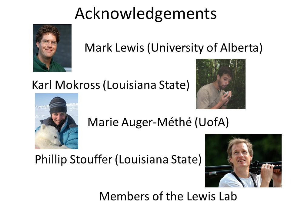Acknowledgements Mark Lewis (University of Alberta) Karl Mokross (Louisiana State) Marie Auger-Méthé (UofA) Phillip Stouffer (Louisiana State) Members of the Lewis Lab