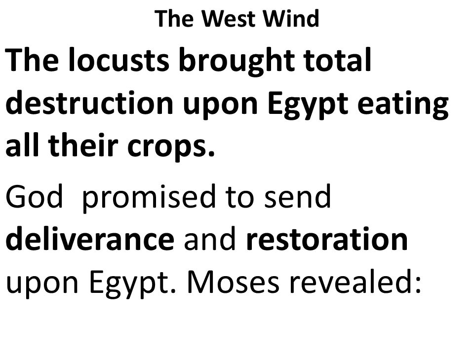 The locusts brought total destruction upon Egypt eating all their crops.