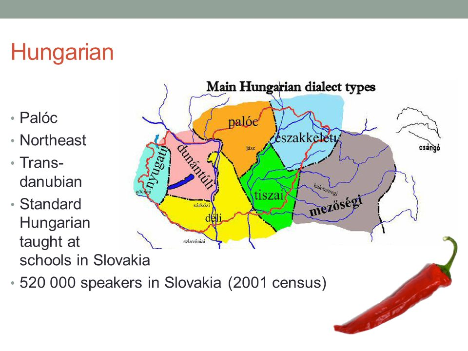 Palóc Northeast Trans- danubian Standard Hungarian taught at schools in Slovakia 520 000 speakers in Slovakia (2001 census)