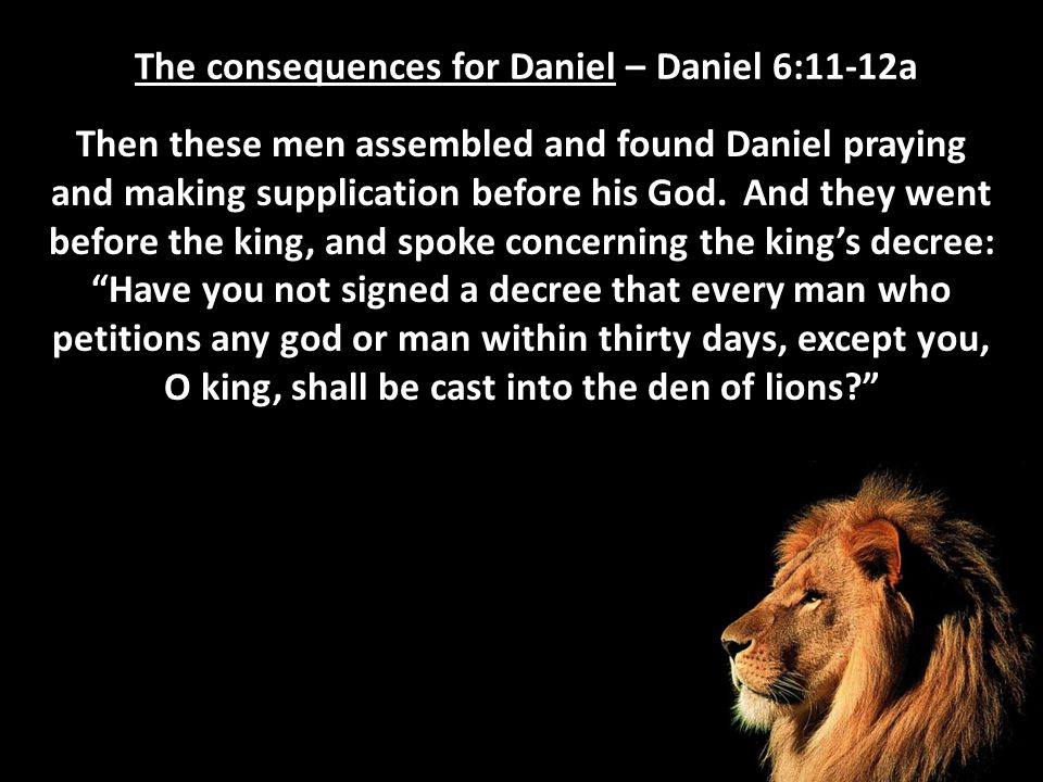 The consequences for Daniel – Daniel 6:11-12a Then these men assembled and found Daniel praying and making supplication before his God. And they went