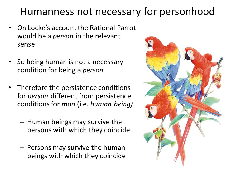 Humanness not necessary for personhood On Locke's account the Rational Parrot would be a person in the relevant sense So being human is not a necessary condition for being a person Therefore the persistence conditions for person different from persistence conditions for man (i.e.