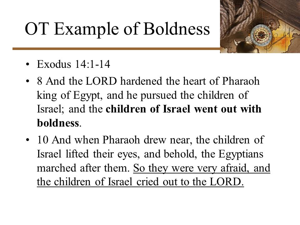 OT Example of Boldness Exodus 14:1-14 8 And the LORD hardened the heart of Pharaoh king of Egypt, and he pursued the children of Israel; and the children of Israel went out with boldness.