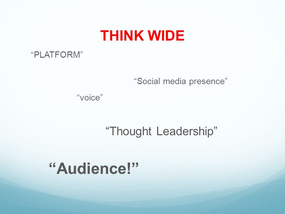 THINK WIDE PLATFORM Social media presence voice Thought Leadership Audience!