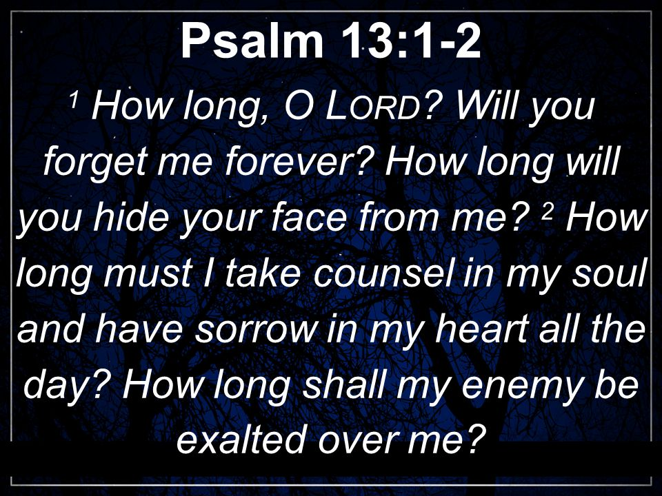 Psalm 13:1-2 1 How long, O L ORD . Will you forget me forever.