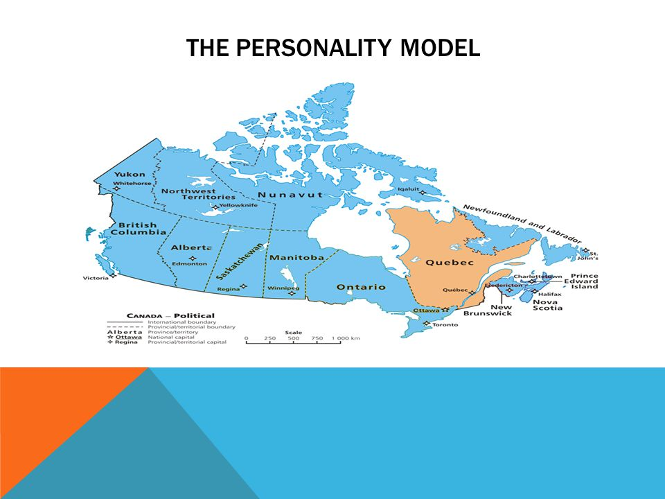 THE PERSONALITY MODEL