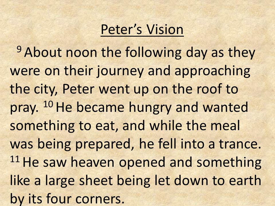 Peter's Vision 9 About noon the following day as they were on their journey and approaching the city, Peter went up on the roof to pray.