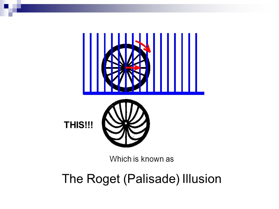 Which is known as The Roget (Palisade) Illusion THIS!!!